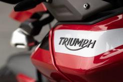 Triumph Tiger 900 GT Pro 2020 22