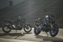 Yamaha MT 125 03 2020 accesorios 02