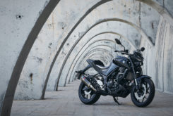 Yamaha MT 125 03 2020 accesorios 04