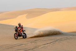 Dakar 2020 Etapa 11 (10)