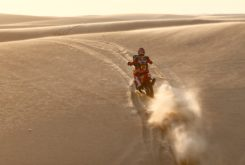 Dakar 2020 Etapa 11 (11)