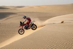 Dakar 2020 Etapa 11 (27)