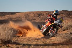 Dakar 2020 Etapa 5 (17)