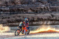 Dakar 2020 Etapa 5 (20)