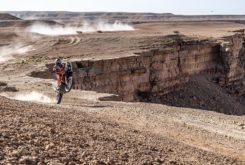 Dakar 2020 Etapa 9 mejores fotos (17)