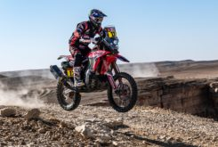 Dakar 2020 Etapa 9 mejores fotos (41)
