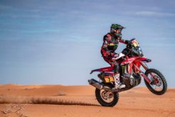 Dakar 2020 mejores fotos Etapa 12 (27)