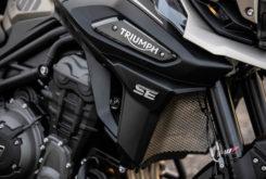Triumph Tiger 1200 Desert 2020 31