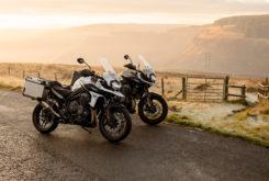 Triumph Tiger 1200 Desert Alpine 2020 41