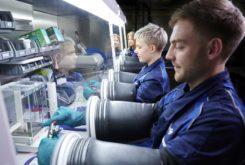 BMW inversion investigacion baterias electricas