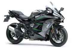 Kawasaki Ninja H2 SX 2020 (6)