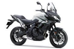 Kawasaki Versys 650 2020 (20)