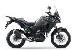 Kawasaki Versys X 300 2020 (3)