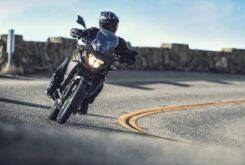 Kawasaki Versys X 300 2020 (5)