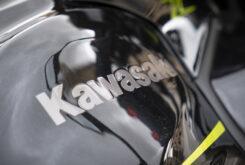 Kawasaki Z650 detalles logo 2020