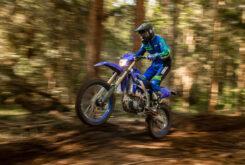 Yamaha WR250F 2021 (1)