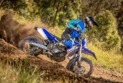 Yamaha WR250F 2021 (2)