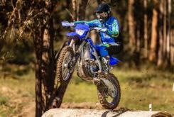 Yamaha WR250F 2021 (3)