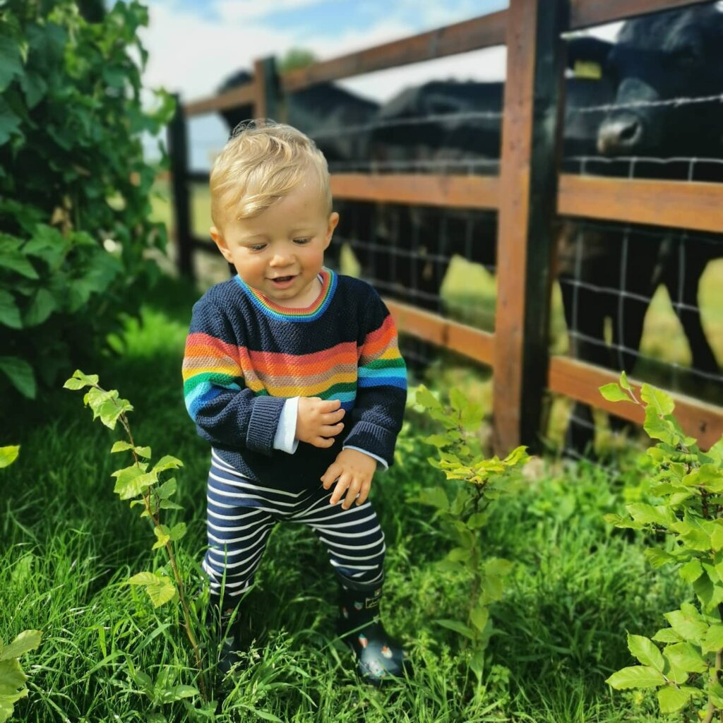 Born Muddy: the boy who adores beef cattle