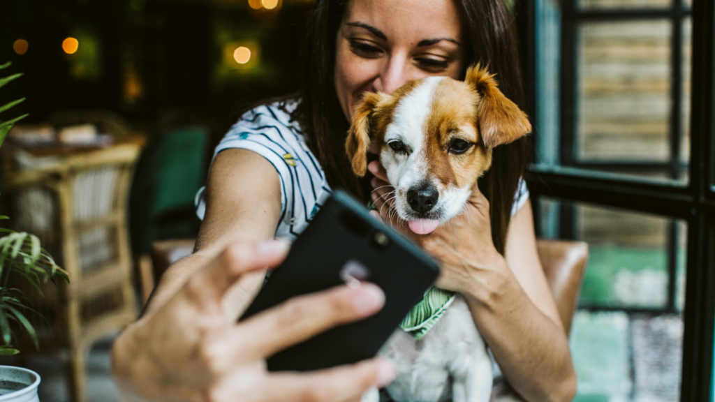 Locked down puppy love can lead to more online matches