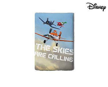 Edredão Aviões Sky - 160X220