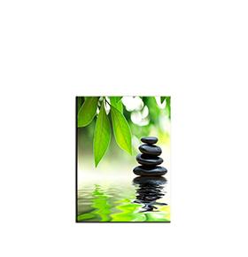 Quadro de Lona Flor e Pedras | 80 X 60