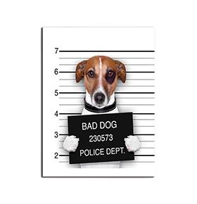 Quadro de Lona Cão | 80 X 60
