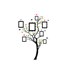 Vinil Árvore com Moldura para Fotografias | 100 x 125cm