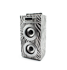 Coluna JoyBox® com Bluetooth | Zebra