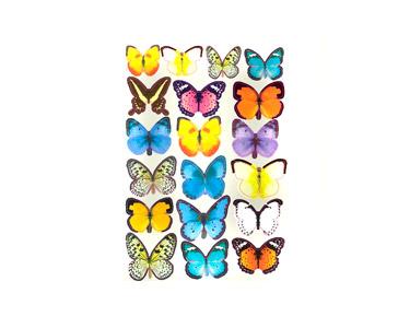 Vinil Decorativo Butterflies Colors