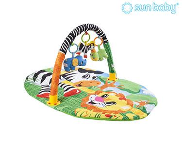 Ginásio Educacional Oval | Zebra e Leão