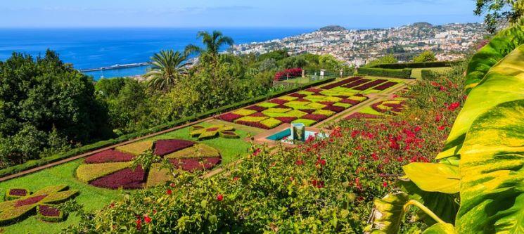Hotel Windsor 4* | Madeira Incrível! 3 Noites no Centro do Funchal