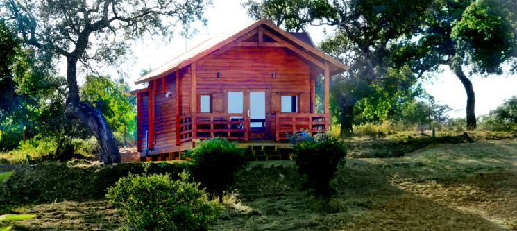 Monte Gois Country House & Spa | Viva as Maravilhas do Alentejo! 1 ou 2 Nts em Bungalow