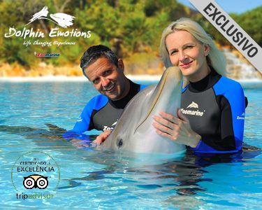 Dolphin Emotions! Interacção com Golfinhos para Dois | Zoomarine