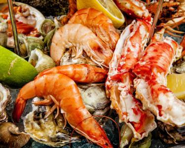 2014|Salpicos Selvagens Tudo Incluído - Jantar Romântico