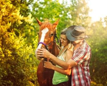Presente Perfeito! Passeio Romântico de Cavalo à Beira Rio | Aveiro - 1 Hora