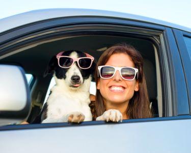 Limpeza Completa de Automóvel | 1 ou 2 Viaturas - Carro Como Novo!