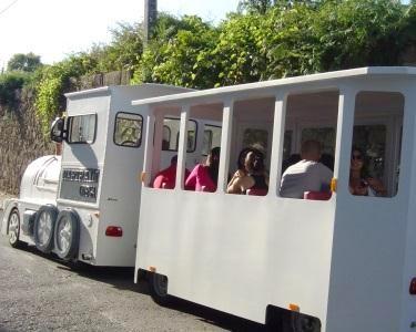 Magic Train | Passeio e Visita às Caves p/ 2 Adultos + 2 Crianças | Porto