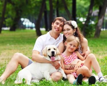 Sessão Fotográfica Pets & Family | 50 Momentos Únicos