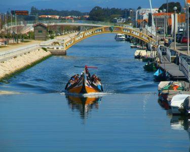 Descubra Aveiro | Cruzeiro em Moliceiro & Ovos Moles | 2 ou 4 Pessoas