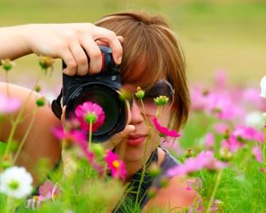 A Beleza Natural do Monsanto | Passeio Fotográfico - 1 ou 2 Pessoas