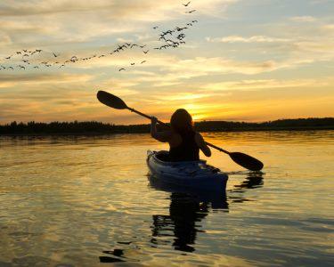 Canoagem na Ilha do Cavalo | Aventure-se no Rio Tejo | 1, 2 ou 4 Pessoas