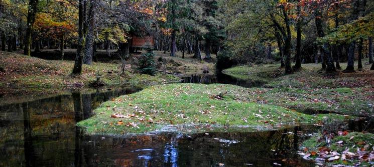 2 Noites em Bungalow | Parque Natural do Gerês