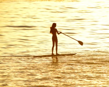 Total Paddle Experience: Land Paddle + Stand-Up Paddle | Oeiras | 2h