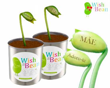 Feijões Mágicos Wish A Bean | Um Presente Original & Especial
