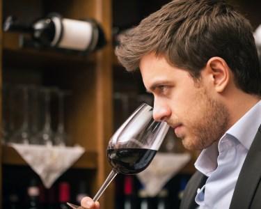 Para Apreciadores de Vinho: Curso Online Enologia | Sociedade Digital