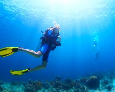 Curso de Mergulho Inicial OWD Anthia Diving | Até 6 Pessoas - Sesimbra