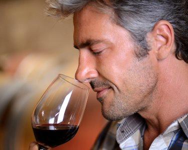 Enoport United Wines | Visita às Caves Velhas + Prova de Vinhos
