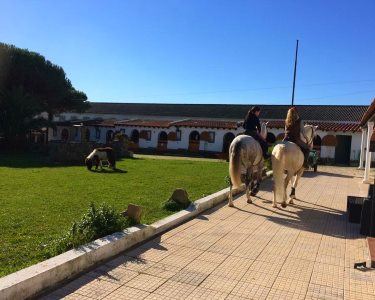 Magnífico Passeio a Cavalo em Quinta - Sintra   1h - Lusitanos Academy