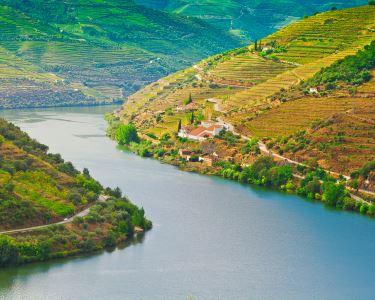 Do Porto à Curva da Lomba em Iate Exclusivo | Até 12 Pessoas | Feel Douro